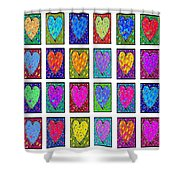 24 Hearts In A Box Shower Curtain