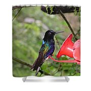 Scenes From Ecuador Shower Curtain