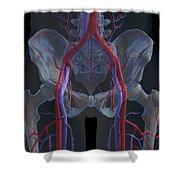 The Cardiovascular System Shower Curtain