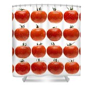 24 Tomatoes Shower Curtain