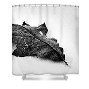 Wind Dancer Shower Curtain