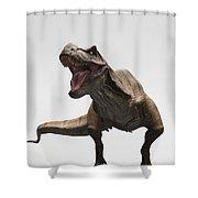 Dinosaur Tyrannosaurus Shower Curtain