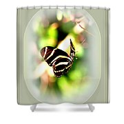 2731-021 Shower Curtain