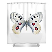 28 Apollo Butterfly Shower Curtain