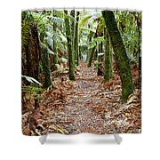 Jungle 12 Shower Curtain