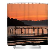 286969000-002m Shower Curtain