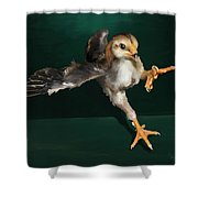 29. Yamato Chick Shower Curtain