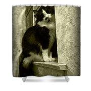 2986 Shower Curtain