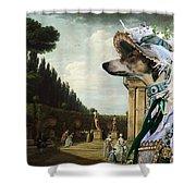 Chart Polski - Polish Greyhound Art Canvas Print Shower Curtain