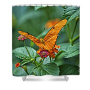 3 2 1 Prepare For Butterfly Liftoff Shower Curtain