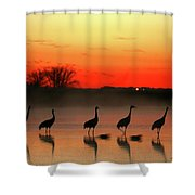 A General View Of The National Park Shower Curtain