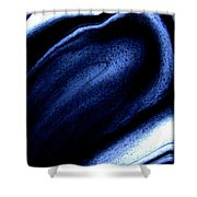 Abstract 38 Shower Curtain by J D Owen
