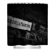 Alley Of Melancholy. Iseo Shower Curtain