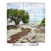 Anne's Beach-3 Shower Curtain