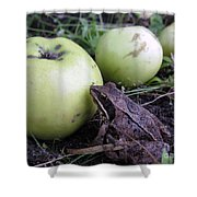 3 Apples And A Frog Shower Curtain