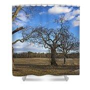 3 Appleton Trees Shower Curtain