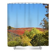 Autumn Colors In Maine Blueberry Field And Forest Shower Curtain
