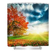 Autumn Fall Landscape In Park Shower Curtain