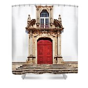 Baroque Portal Shower Curtain