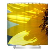 #allthehoney Shower Curtain