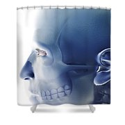 Bones Of The Face Shower Curtain