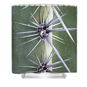 Cactus Thorns Shower Curtain