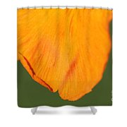 Canna Lily Named Wyoming Shower Curtain