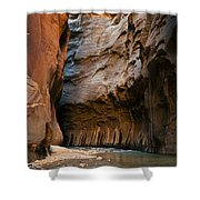 Canyon Trail Shower Curtain