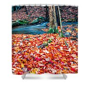 Chesterfield Gorge New Hampshire Shower Curtain