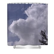 Clouds And Trees Shower Curtain