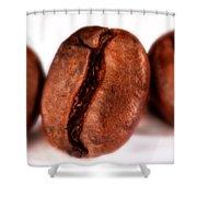 3 Coffee Beans Shower Curtain