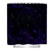 Color Abstracts Shower Curtain