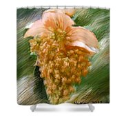 Colorful Grapes Shower Curtain