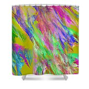 Computer Generated Abstract Fractal Flame Shower Curtain