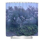 Craggy Gardens North Carolina Blue Ridge Parkway Autumn Nc Sceni Shower Curtain