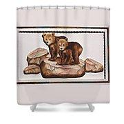 3-d Bearizona Bear Babies Shower Curtain