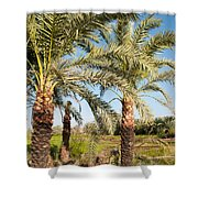 Dakhla Shower Curtain
