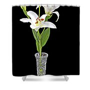 Daylily Shower Curtain