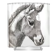 3 Days Old Shower Curtain