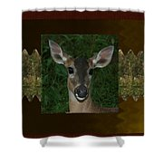 Deer Wild Animal Portrait For Wild Life Fan From Navinjoshi Costa Rica Collection Shower Curtain