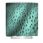 Dentine Shower Curtain