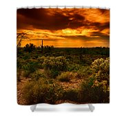 Desert Gold  Shower Curtain