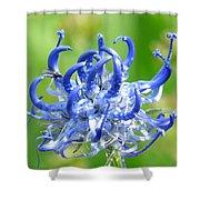 Devils Claw Flower Shower Curtain