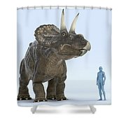 Dinosaur Diceratops Shower Curtain