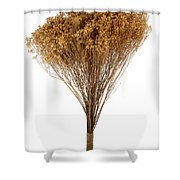 Dry Flowers Bunch Shower Curtain