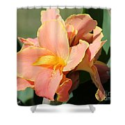 Dwarf Canna Lily Named Corsica Shower Curtain by J McCombie