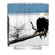 Elegance In The Morning Shower Curtain