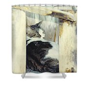 Emmie Shower Curtain
