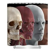 Facial Reconstruction Shower Curtain