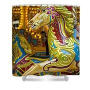 Fairground Carousel Shower Curtain